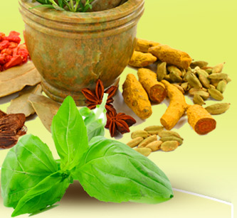 ayurveda in london